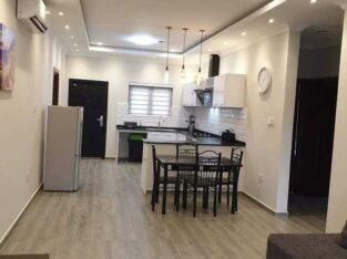 Executive Two Apartment Apartment Fully Furnished Available for Short or Long